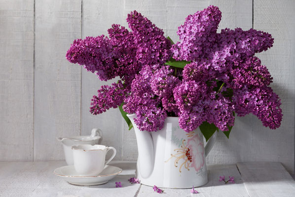 Tischdeko frühlingsblumen im glas  Blumen, Geschirr und Möbel: Tischdeko im Frühling | Chefkoch.de