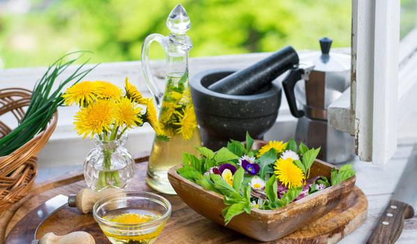 Zartbitteres Wildkraut Für Salat, Pesto Und Co