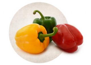 Rezepte mit Paprika