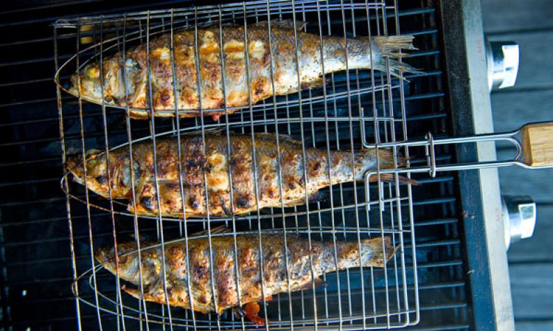 Fisch Gasgrill : Alles zum gasgrill chefkoch.de