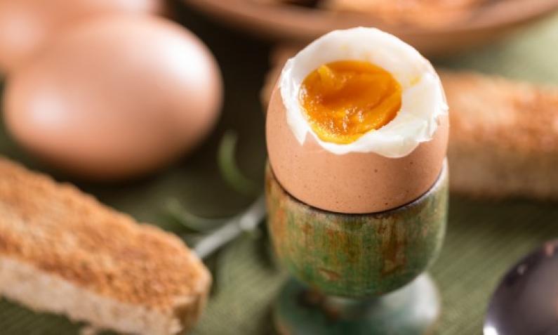Der ideale Start in den Tag mit einem leckeren gekochten Ei aus dem Eierkocher