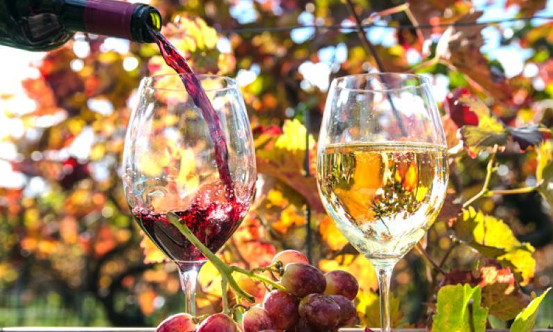 Italienische Getränke: Warum ein Glas Wein zu servieren nicht ausreicht