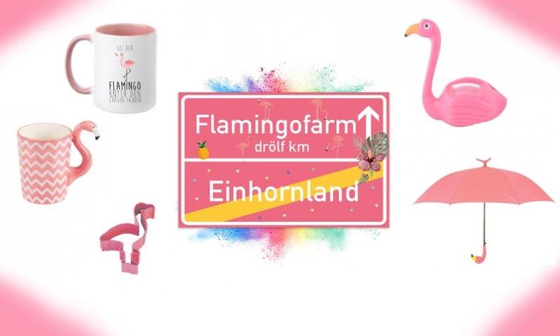 Flamingo Paradies