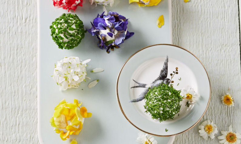 Bunte Blütenbällchen
