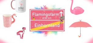 Willkommen zur Flamingoparty