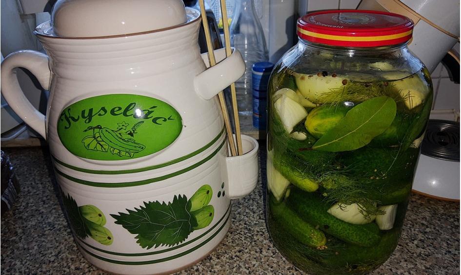 Rezept Salzgurken