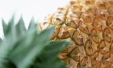 Kurbelt Ananas die Fettverbrennung an?