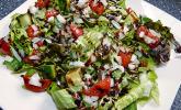 Lollo Rosso Salat mit Gurke und Tomaten