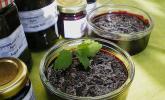 Heidelbeer - Apfel - Konfitüre mit Zimt