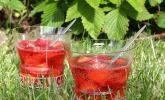 Erdbeer Campari Bowle