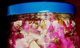 Rosensirup mit Blüten der Saison