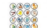 Pokémon Esspapier