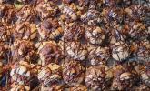 Löffelkekse mit Nüssen