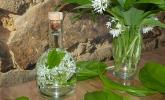 Bärlauchblüten - Essig