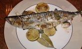 Orientalische Makrele vom Grill