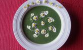 Brennnessel - Giersch Cremesuppe