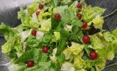 Blattsalat mit Johannisbeer-Senf-Dressing
