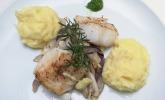 Hauptspeise: Loins vom Kabeljau mit geschmortem Fenchel und Kartoffelstampf