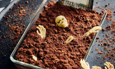 Halloween Zombiegrab-Kuchen