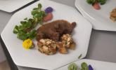 Hauptspeise: Bockbier-Gulasch vom heimischen Wildschwein nach Braumeisterart, mit frischen Brezenknödeln an kühlem Kartoffel-Preiselbeeren-Stampf