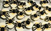 Spinnen-Eier