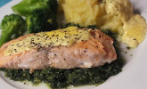 Gebratener Lachs auf Grünkohl mit Zitronen-Senf-Sauce