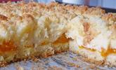 Mandarinenkuchen mit Kokosstreuseln