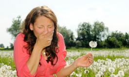 Bei einer Pollenallergie kann es zu Kreuzreaktionen mit Lebensmitteln kommen