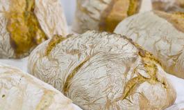 Tipps zum Erkennen und Vermeiden von Brotfehlern