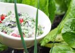 Sesamdressing mit Granatapfel-Kernen und frischen Kräutern